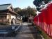 Foto Masako und Ossi Stock Shikoku 2017 (337) hp (Mittel)