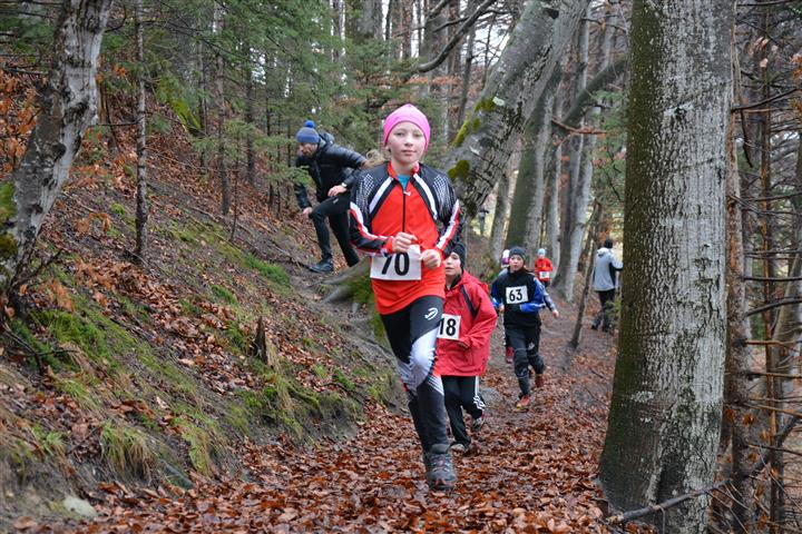 2015 Winter Cross Lauf Kramsach 3 (Klein)
