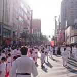 2015 Japan Reise Foto Shihan Ossi Stock NAHA Tag des Karate 25.10. (Mittel)